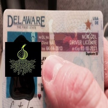 Buy real and fake Delawar driver's licenses online